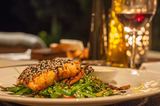 Zinzi: salmon dinner with pinotage