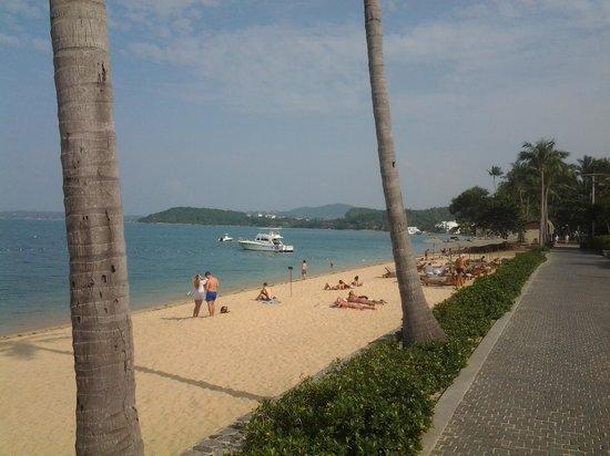 Hansar Samui Resort : view from the wet edge pool