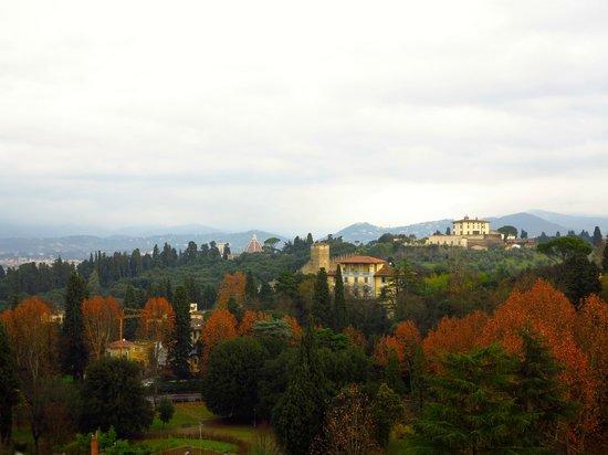 Villa Cora : view