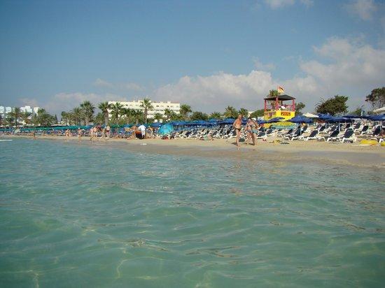 Nelia Beach Hotel: вид с пляжа на отель