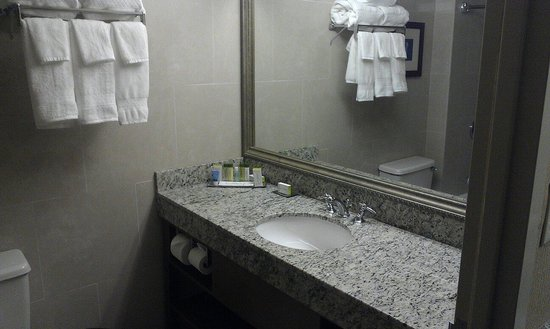 DoubleTree by Hilton & Miami Airport Convention Center : Bathroom sink