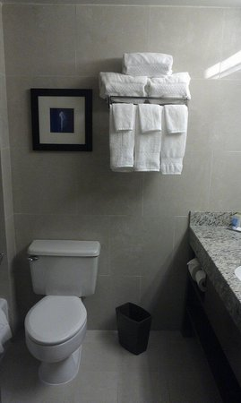 DoubleTree by Hilton & Miami Airport Convention Center : Bathroom