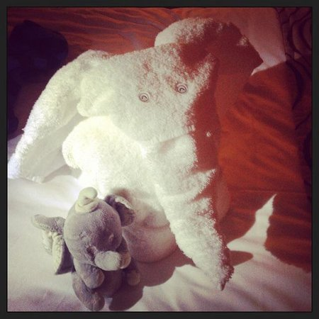 Edinburgh Marriott Hotel: Housekeeping surprise- an elephant friend for Dumbo!