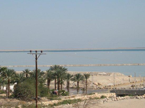 Leonardo Inn Hotel Dead Sea: d
