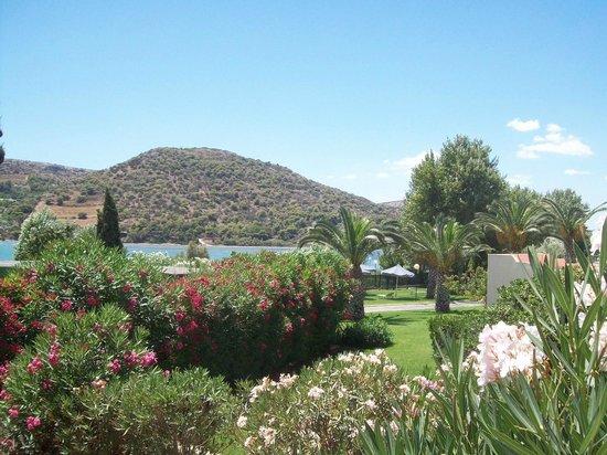 Dolce Attica Riviera: Территория отеля