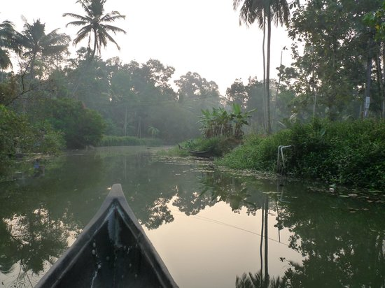 GK's Riverview Homestay: en canoé