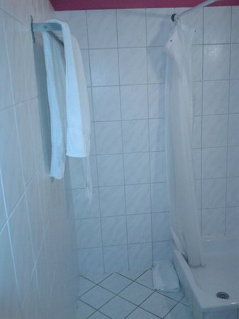 The Flame Tree Madeira: Shower 1
