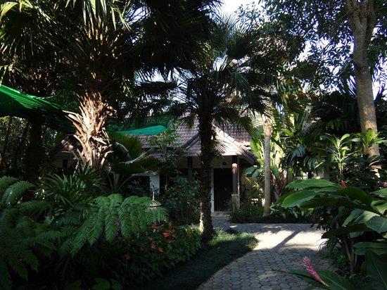Laluna Hotel and Resort : un bungalow dans le jardin