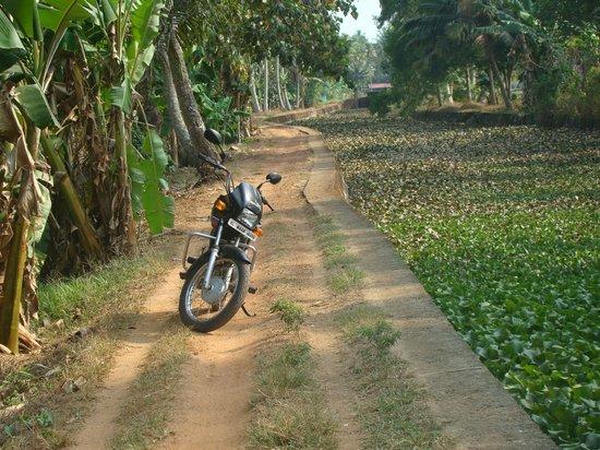 South Canal Holidays : balade en moto entre rizières, maisons et canaux