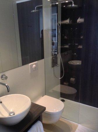 Crowne Plaza Zürich Hotel : Toilet