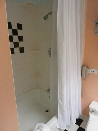 Miami Beach Resort and Spa: Bathroom