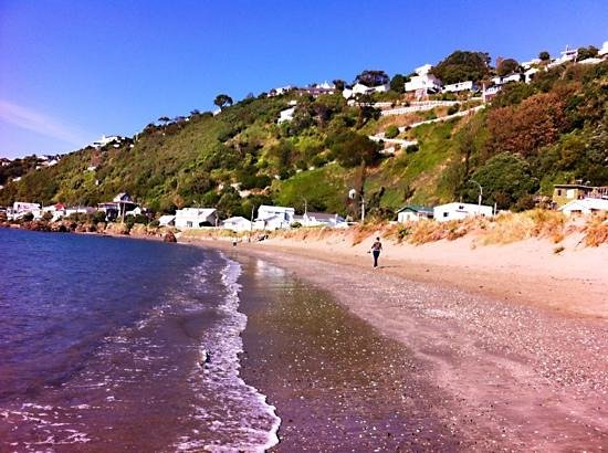 Morning Walk Along Worser Bay Beach