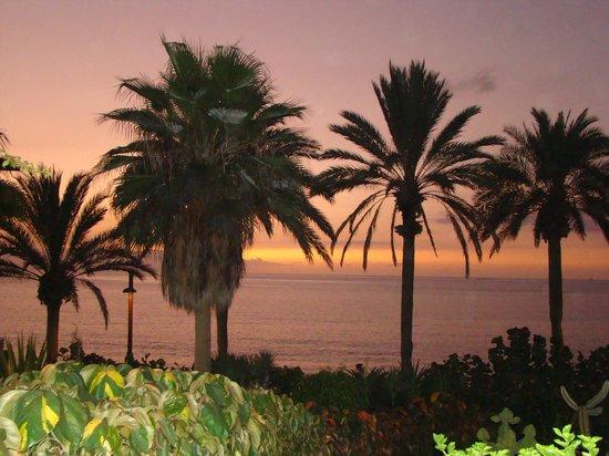 Sol Tenerife: вид на океан