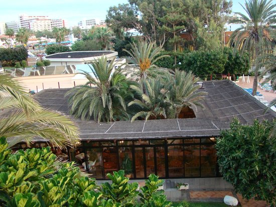 Sol Tenerife: территория отеля