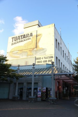 Tuatara Lodge: Hostel from street level