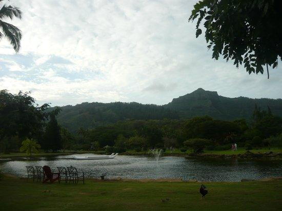 Smith Family Garden Luau: Beautiful grounds