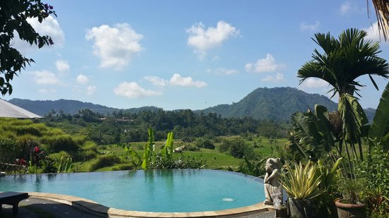Surya Shanti Villa: Pool