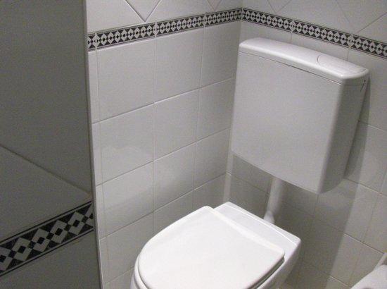 Hotel Los Robles : Baño