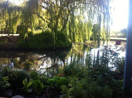 Willowleigh B&B: gardens