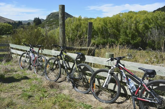 Offtrack MTB Tours - Day Tours: bikes we used