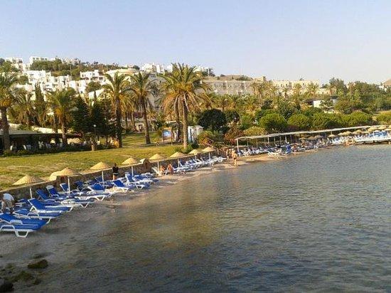 Yasmin Resort Bodrum : güzel plajı