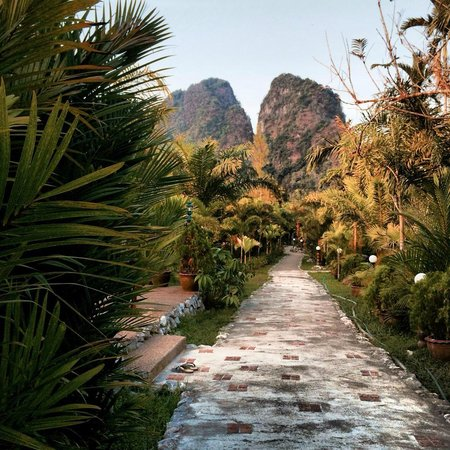 Hotel Khao Sok & Spa: piękny teren hotelu