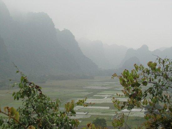 Vega Travel : Rice paddies on Cat Ba