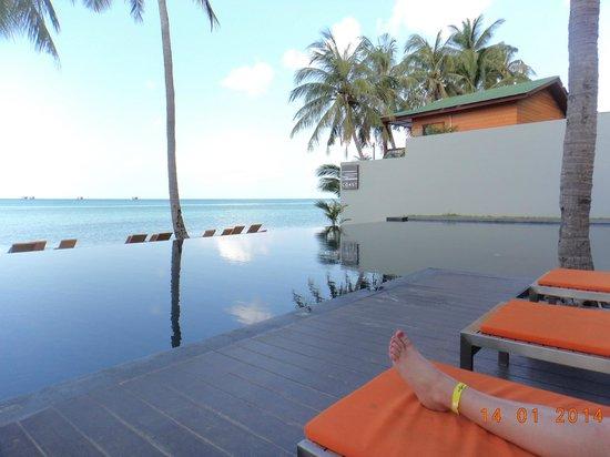 The COAST Resort - Koh Phangan : amazing infinity pool