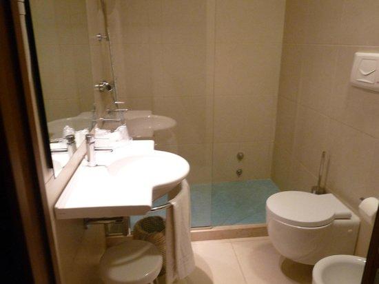 Hotel Raffaello Firenze: baño