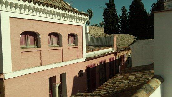 Apartamentos - Suites Santa Cruz: Vistas solarium habitación