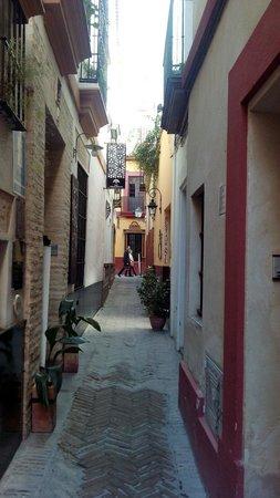 Apartamentos - Suites Santa Cruz: Puerta exterior de los apartamentos