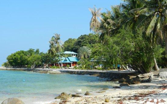 Haad Tian Beach Resort Koh Phangan: l'hotel vu de la plage