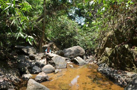 Bang Pae Waterfalls : у водопада