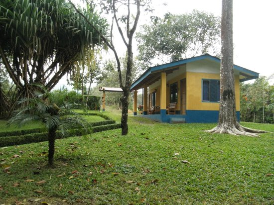Cerro Chato Eco Lodge : garden area with cabana-style rooms
