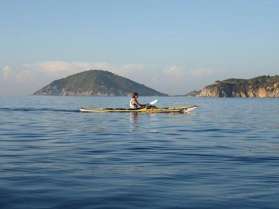kayak de mer au large la libert Picture of Palavas Kayak de Mer