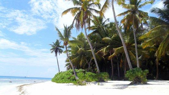 Parque Nacional del Este, Dominik Cumhuriyeti: Isla de Saona