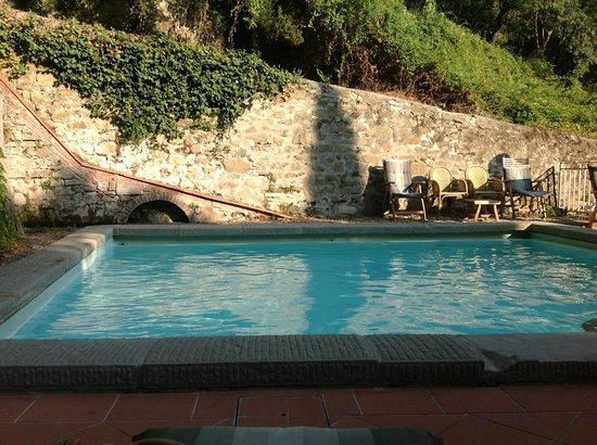 FH Villa Fiesole Hotel : The pool