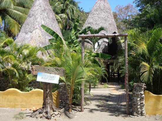 Oasis Surf Camp: Entrée