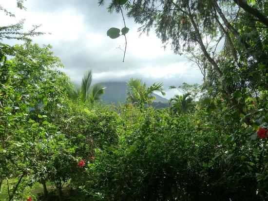 Hotel Mountain Paradise: vista del vulcano Arenal