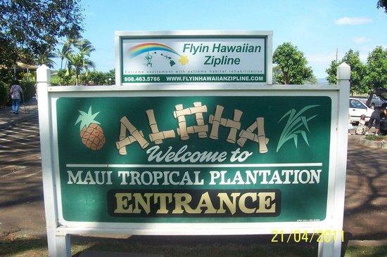 Maui Tropical Plantation: Maui