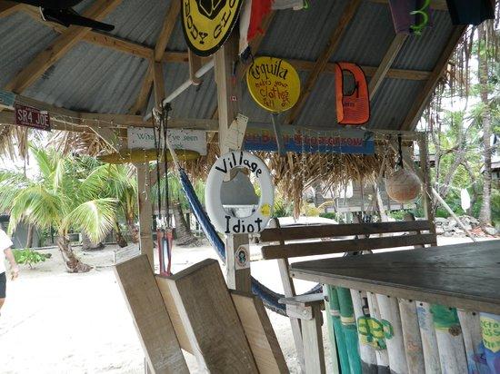 Tita's Pink Seahorse Bar: The Bar