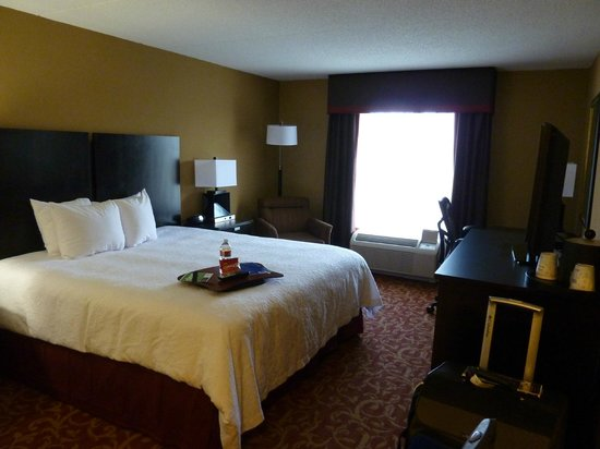 Hampton Inn & Suites Memphis-Shady Grove Road: Room