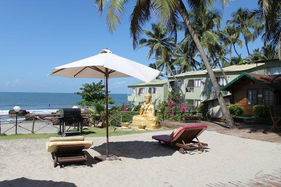 Micasa Beach Resort : Территория