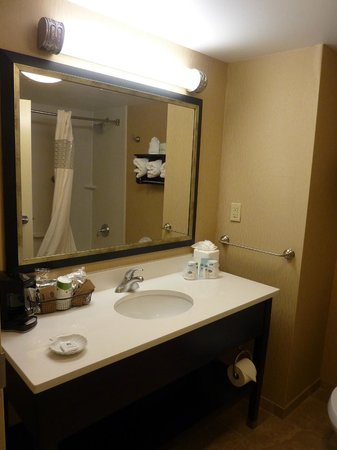 Hampton Inn & Suites Memphis-Shady Grove Road: Bathroom