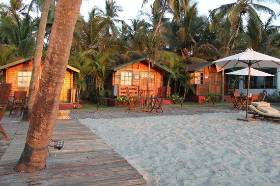 Micasa Beach Resort: Однокомнатные домики