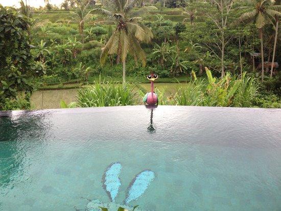 Capung Sakti Maison d'Hôtes : Happy view