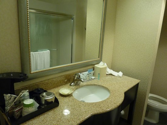 Hampton Inn and Suites Charlotte Airport: Bathroom