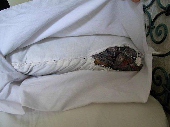 Hotel Movie Gate: Aufgerissenes Kopfkissen, das viel Platz für Ungeziefer lässt