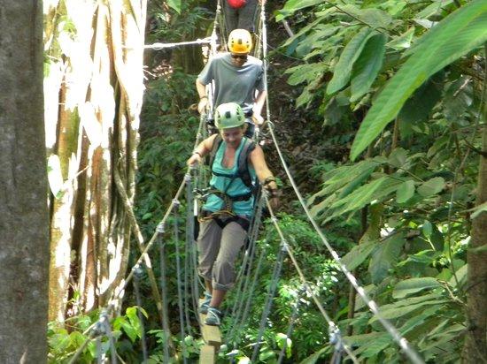 Osa Canopy Tour: Suspension Bridge