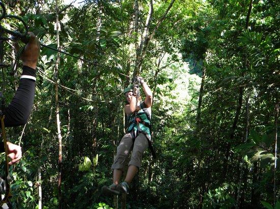Osa Canopy Tour : Zip Line